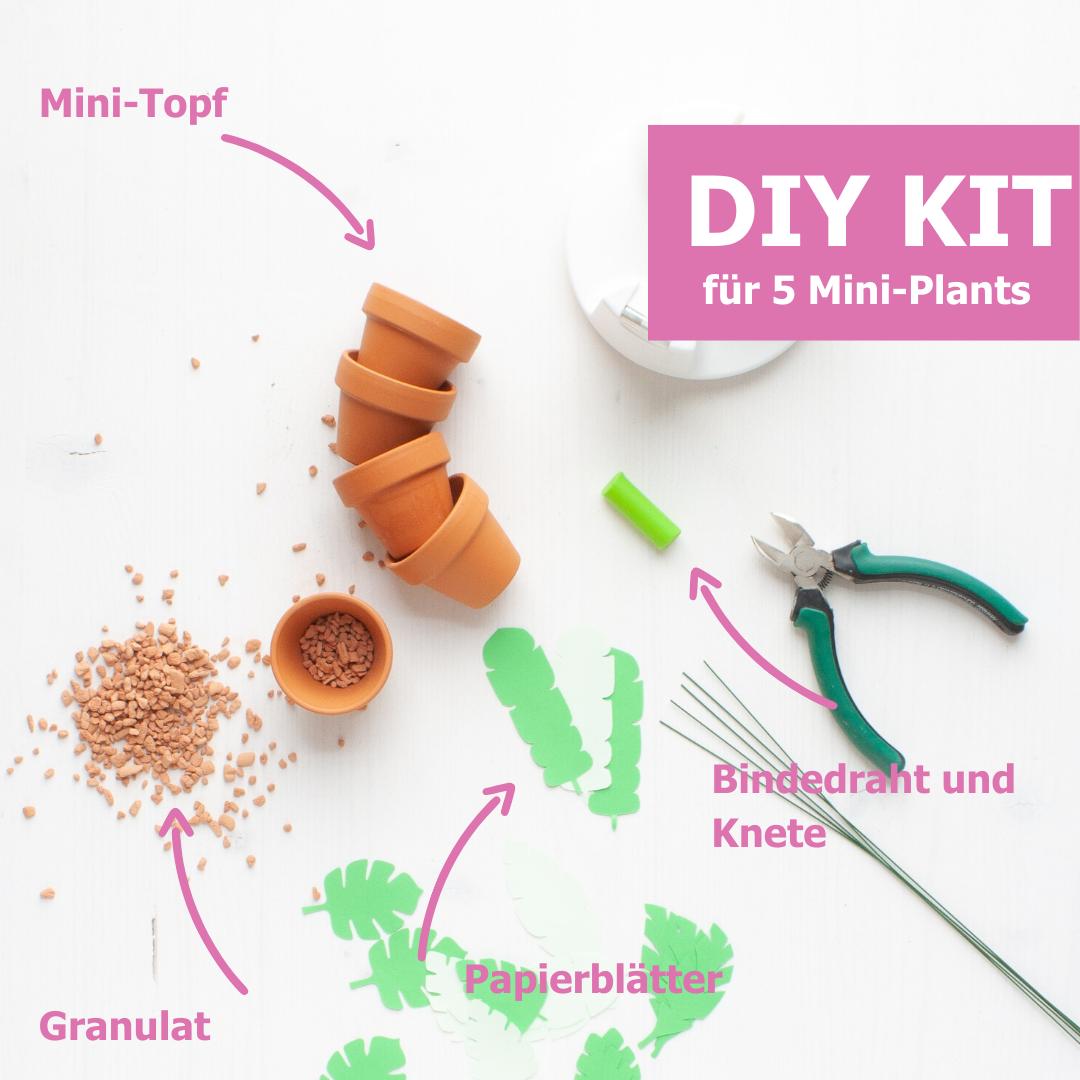 DIY KIT Produkt Pflanzen aus Papier